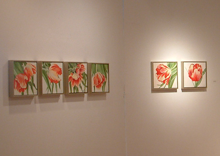 Installation shot of Caroline Seguins 'Jardins Sauvages' exhibition at WKP Kennedy Gallery